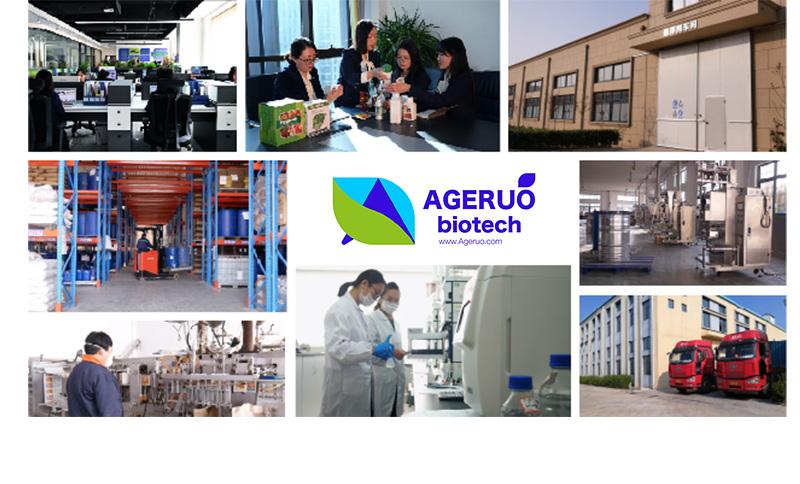 Shijiazhuang Ageruo Biotech (5)