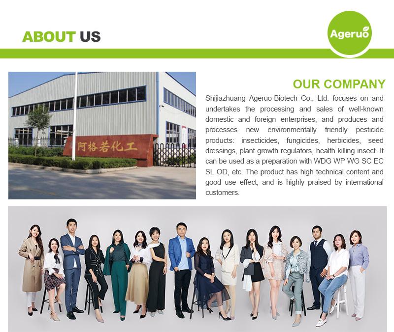 Shijiazhuang Ageruo-Biotech Co., Ltd 1