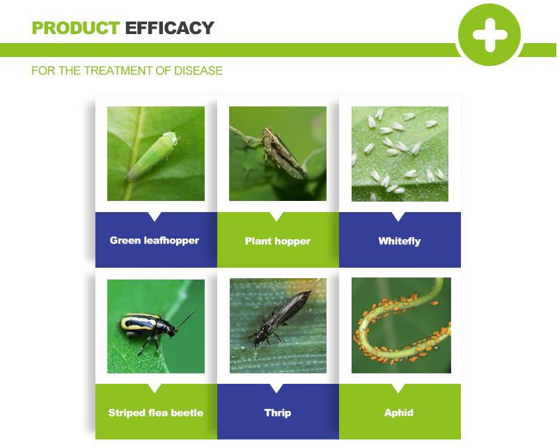 acetamiprid pesticide