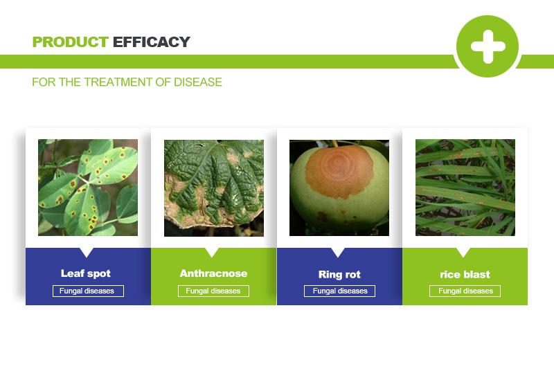 carbendazim fungicide uses