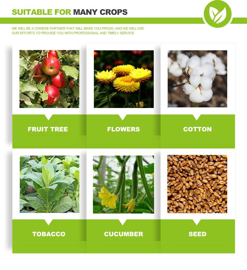 gibberellic acid uses