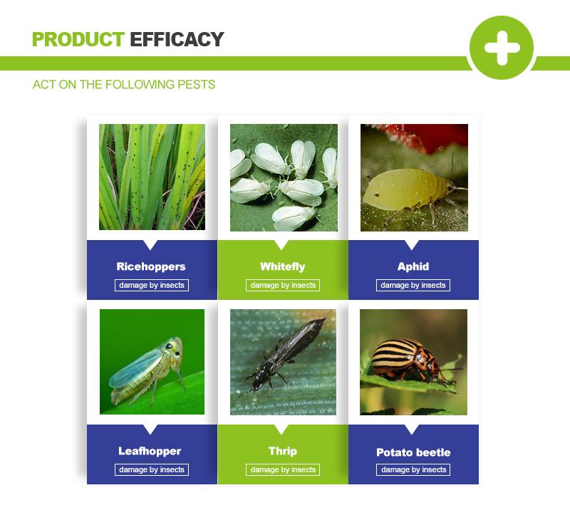 imidacloprid for pests